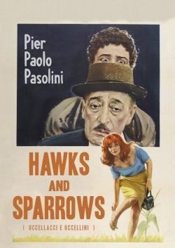 Hawks and Sparrows-watch