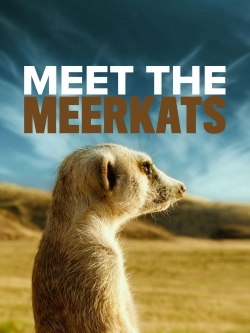 Meet The Meerkats-watch